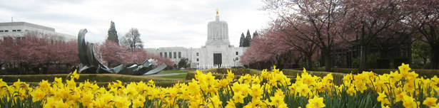 Capitol and Daffodils