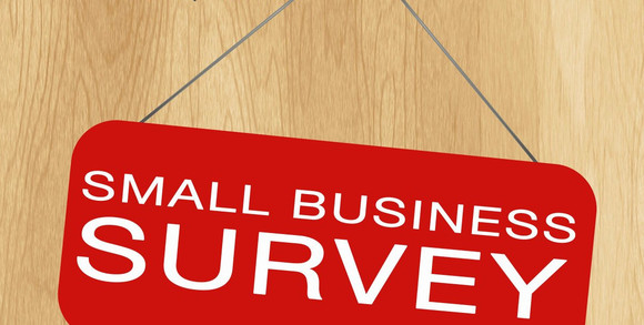 Small Biz Survey