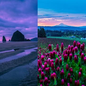 Beautiful Coastal Sunset and Mt. Hood