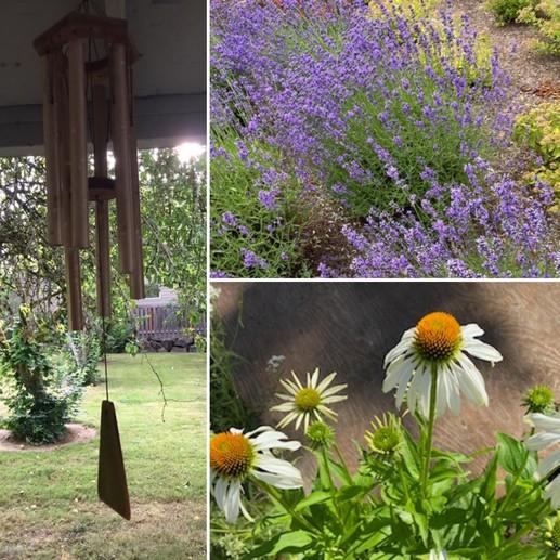 Forest Grove Garden