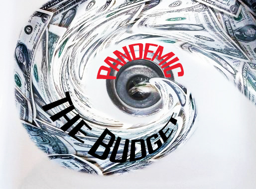 The Budget during pandemic