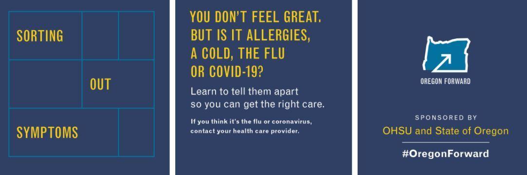 Flu graphic