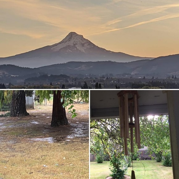 Mt Hood with blue skies, rainy yard, and wind chime
