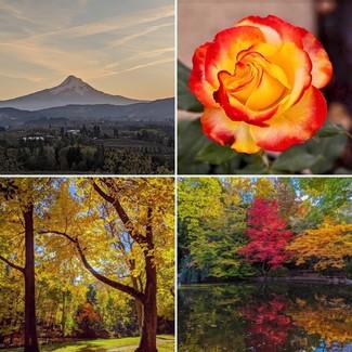 Oregon Fall Photos