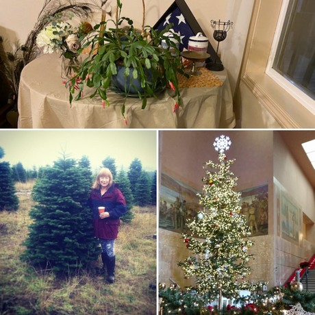 Rep McLain Christmas Photos, capitol christmas tree 2019, Rep McLain picking her 2019 tree, Christmas Cactus 2020