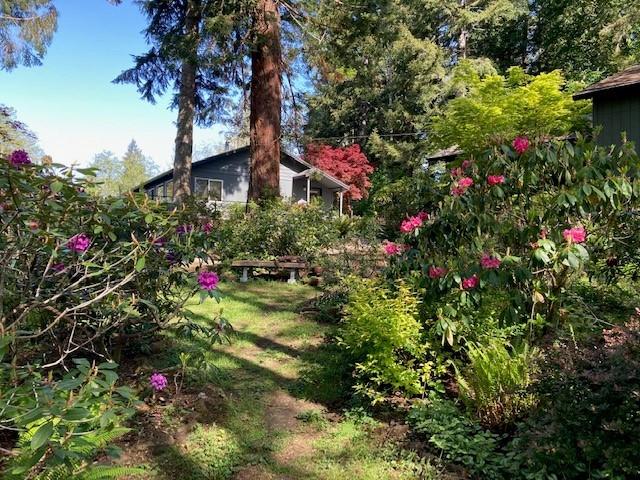 Gomberg Garden