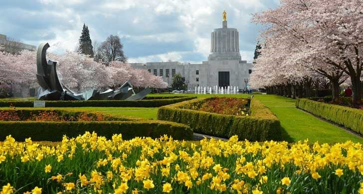 Picture of State Capitol in Spring