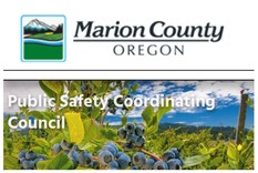 Marion County Public Safety Coordinating Council Graphics