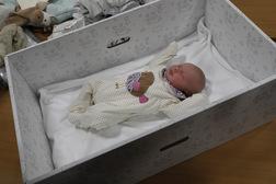 Photo of baby box
