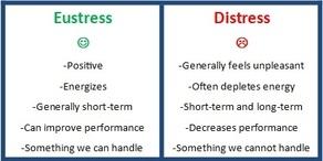 eustress.distress