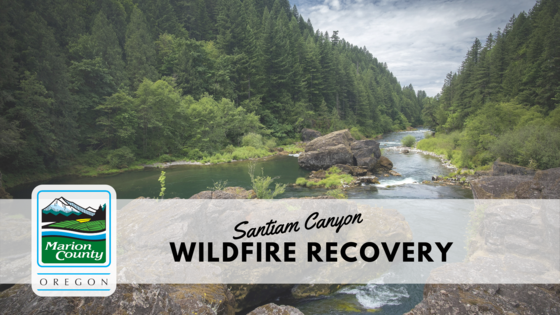 Wildfire Recovery Banner