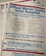 Photo of voter pamphlet