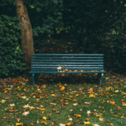 Photo of park bench