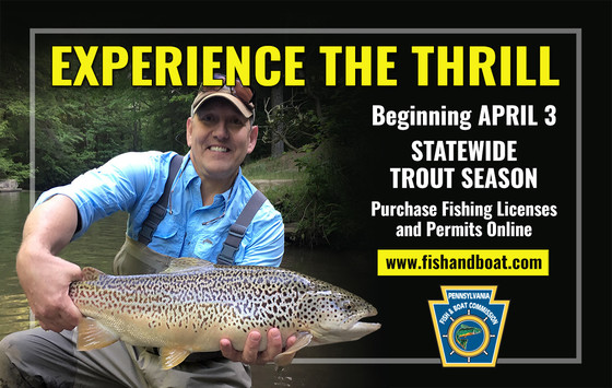 Statewide Trout Season