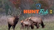 How To Apply For An Elk License on HuntFishPA