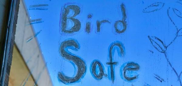 MPES BirdSafe