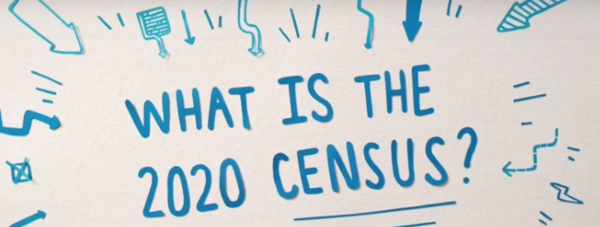 what is census graph