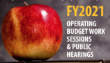 fy2021 work sessions