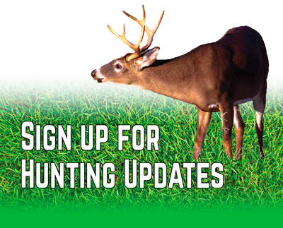 Information About Chronic Wasting Disease Or Cwd From The Tennessee Wildlife Resources Agency