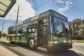 Long DCTA Green bus sitting at a bus stop