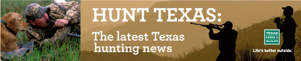 hunt texas - the latest texas hunting news