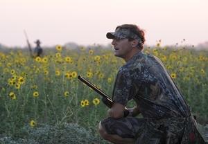 Dove hunters at dawn