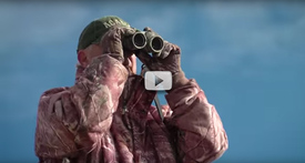 Ultimate Mule Deer Video