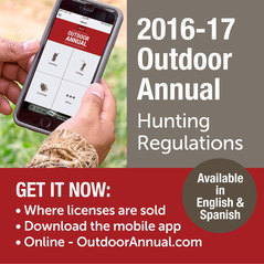 Outdoor Annual