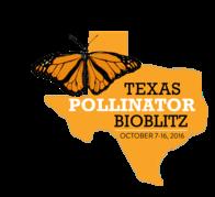 Texas Pollinator BioBlitz