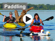 paddlers with ducks