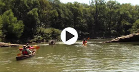 paddlers on a creek