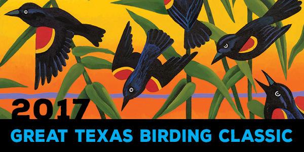 2017 Birding Classic eheader