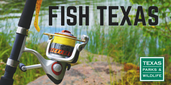 fishing pole and green grass - Fish Texas header
