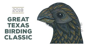 Great Texas Birding Classic 2018