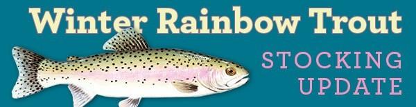 Winter Rainbow Trout Stocking Update