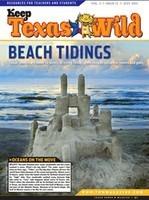 Beach Tidings