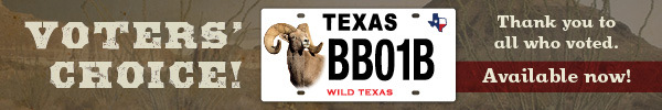 Conservation license plate Bighorn Sheep with link