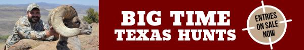 Man next to bighorn sheep, link to Big Time Texas Hunts
