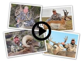 quartet of grand slam photos, link to video