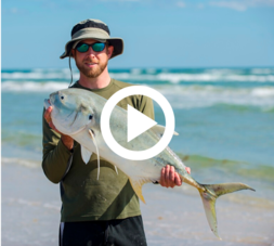 man holding dolphin fish, video link