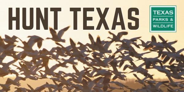 Hunt Texas header with ducks flying