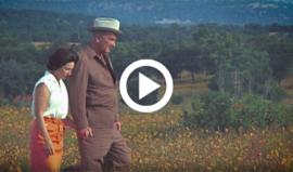 Lady Bird and Lyndon B Johnson walking in wildflowers at LBJ