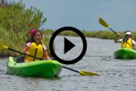Sea Rim, video link