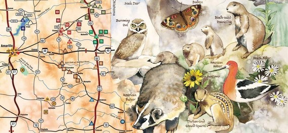 Great Texas Wildlife Trails illustrated map