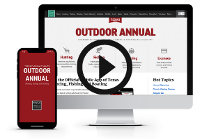 Outdoor Annual on screens, video link