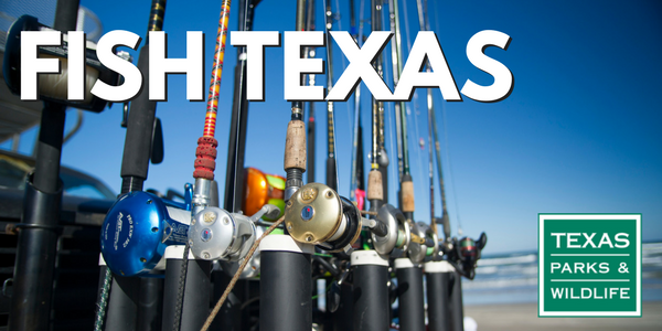 Rods lined up at the beach, Fish Texas header