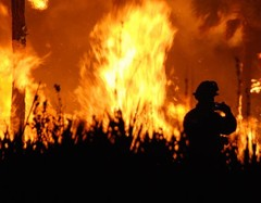 Wildfire observed by a fireman