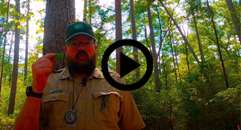 Ranger John, video link