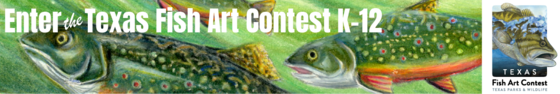 Fish Art Contest ad with link