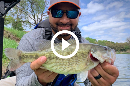 man holds Guadalupe bass, video link